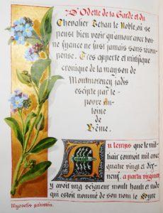 Coligny-Chatillon Contes francs-comtois